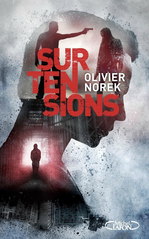 norek_surtensions