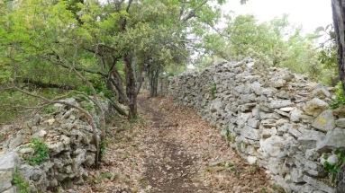 Le chemin de Montredon dit de la Monnaie, qui permettait de conduire les moutons entre les pâturages et le marché de Sommières
