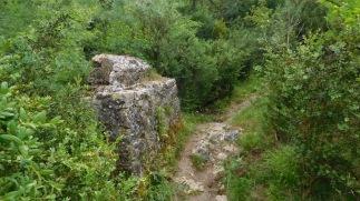 La plus grande partie de cette randonnée est un sentier boisé