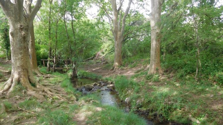 La source des Tourilles, qui coule même au mois d'août.