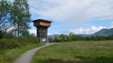 la tour-observatoire