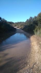 Beaucoup d'eau sur le chemin suite aux pluies du début de semaine. Gelée le matin, mouillée l'après-midi.