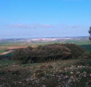 Burgos à l'horizon, mais encore si loin.