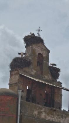 habitation à loyer modéré : le clocher de Villar de Mazarife
