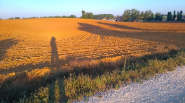 Jeu d'ombres au petit matin