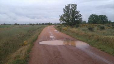 Deux jours de pluie mais peu de flaques: le chemin est sableux