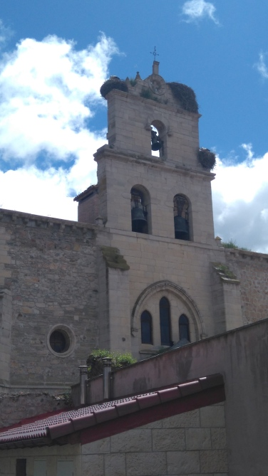 Le clocher aux cigognes